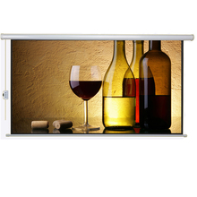 16 9 Customized Sizes Wall Hanging Tybe Projection Screen