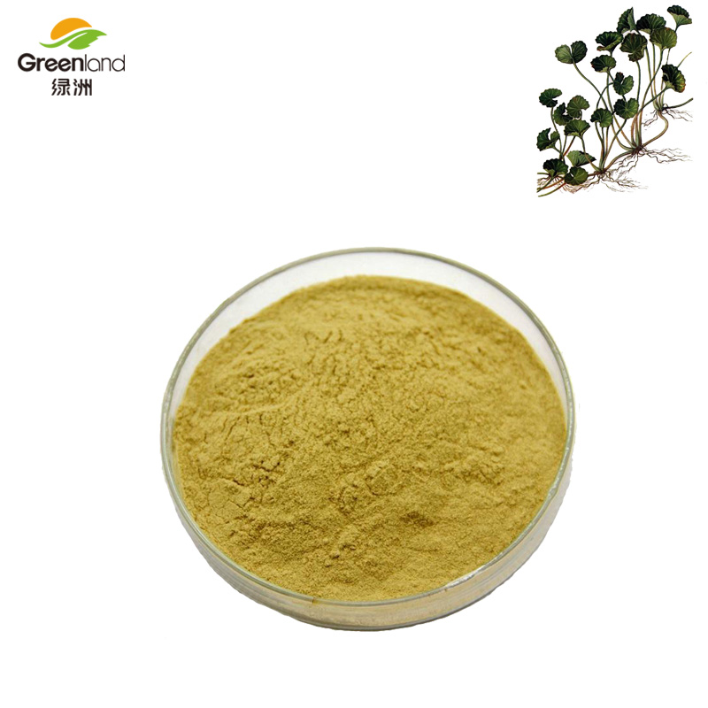 Greenland 100% Pure Natural Chinese Plant Herbal Centella Asiatica Extract Herba Centellae Powder