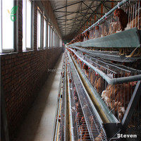 Factory Wholesale Broiler Quail Cage And Automatic Quail Feeding And Drinking System