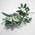 SFH63005 Artificial green accessories atrificial olive leaf plant fake olive tree branch