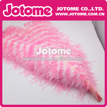 Wholesale Ostrich Feather for hats, fascinators, wedding centerpieces, bouquets and millinery