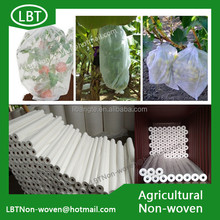 Eco-friendly fruit protection bag non woven fabric,BANANA,GRAPE,STRAWBERRY,MANGO cover bag