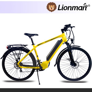 China Made Electric bike motor mid drive electric bicycle with ebike