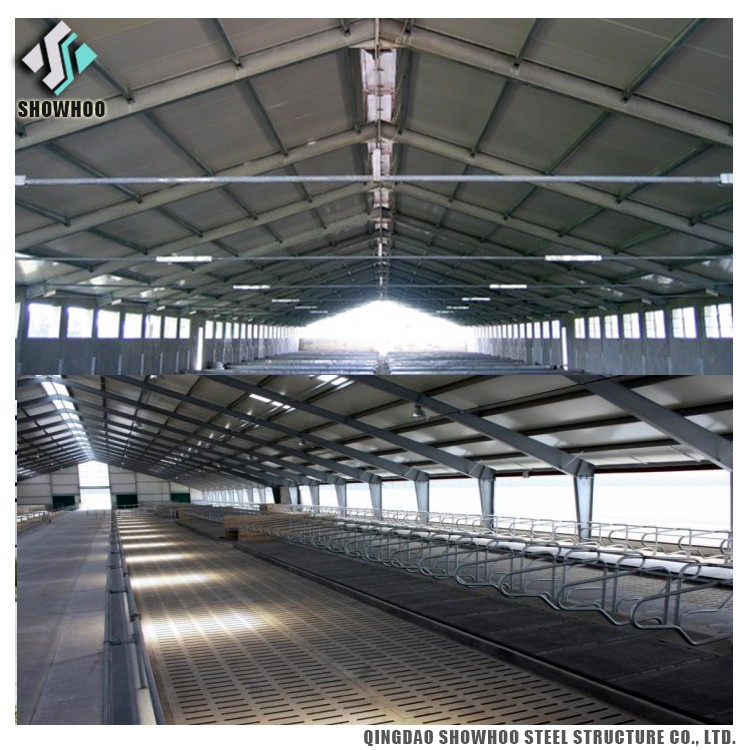 Construction farm design steel structure pig shed