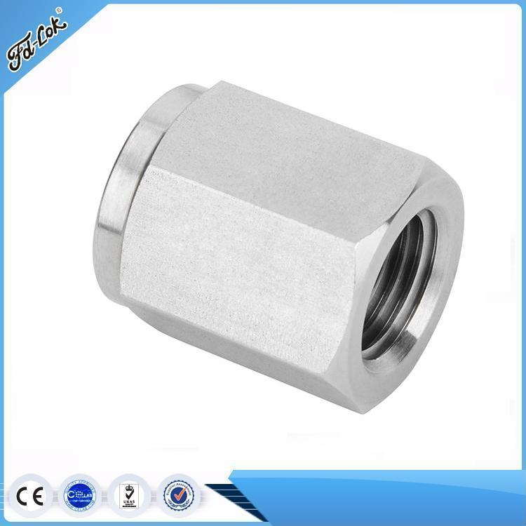 Hydraulic Stainless Steel NPT Thread Pipe End Cap