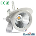 CE Rohs Ra>80 360 degree rotatable COB LED Trunk Downlight