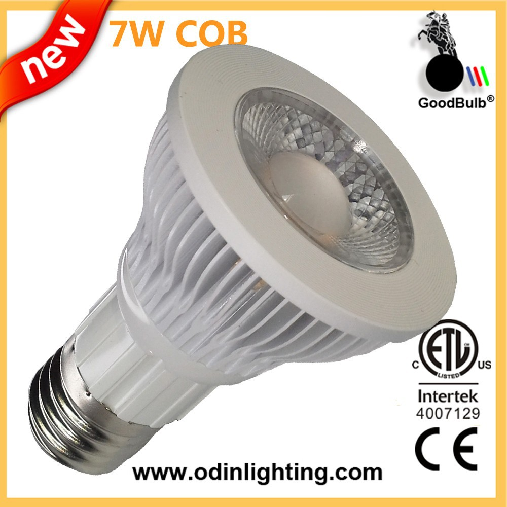 White Aluminum Housing High Power PAR20 7W LED Spot Lamp led lighting fixture
