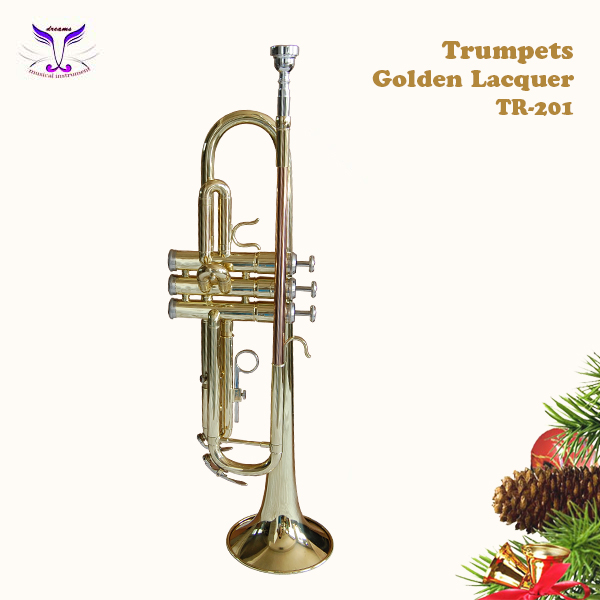 Plastic pocket trumpet mining concessions for sale