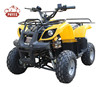 /product-detail/48v-1000w-big-power-atv-electric-with-revers-switch-60684626351.html