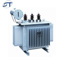 High-Performance Electrical Equipment 3 Phase 100Kva Oil Immersed High Voltage Transformer