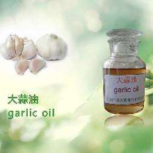 Herbal products wholesaler Supply Natural Garlic Oil price