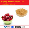 Zhen Ye Ying Tao Pure Best Quality Cherry Extract Powder