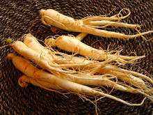 High quality crude Chinese Panax ginseng