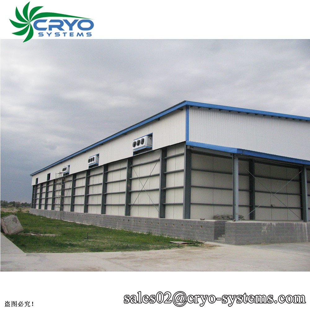 40 feet cold room containers controlled atmosphere cold storage