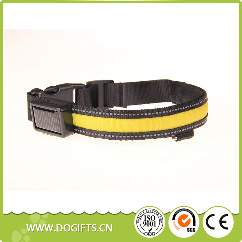 High quality 7 Colors Background pet accessories Solar USB rechargeable led dog collars