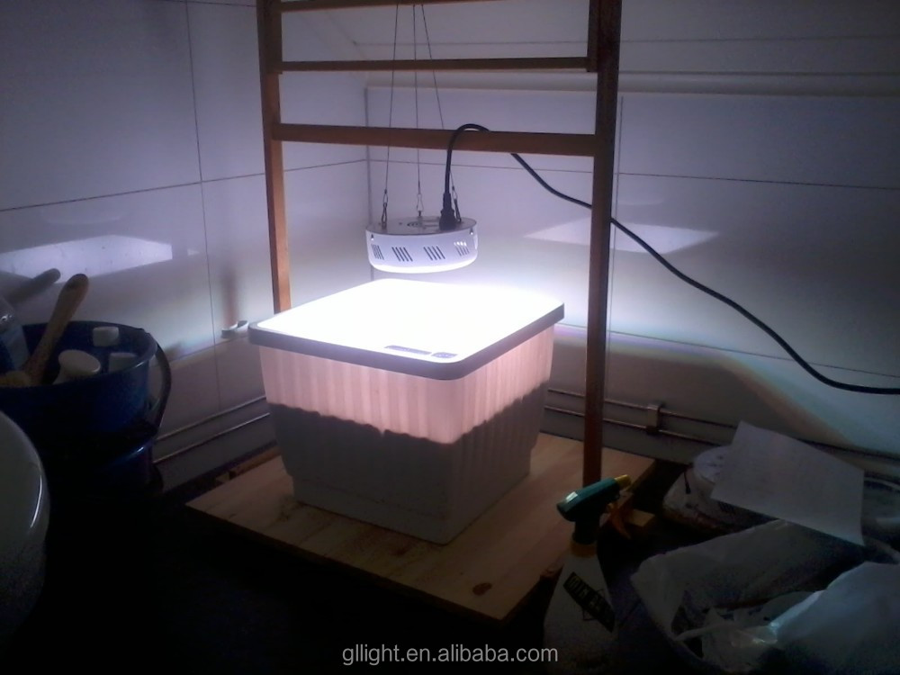 75W led grow light ufo for sell 3 watt full spectrum grow light led grow lamp mini chip