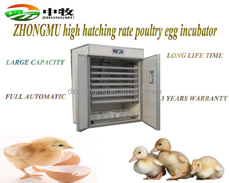 ZM-1848/Top selling meat chickens egg hatchery for sale