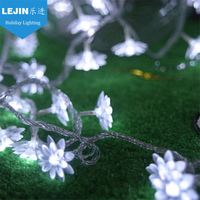 Multifunctional battery operated led christmas lights for cars