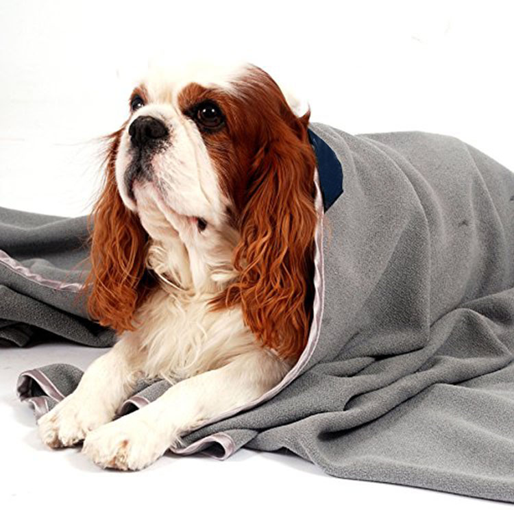 China supplier oversized microfibre pet towel microfibre dog towel