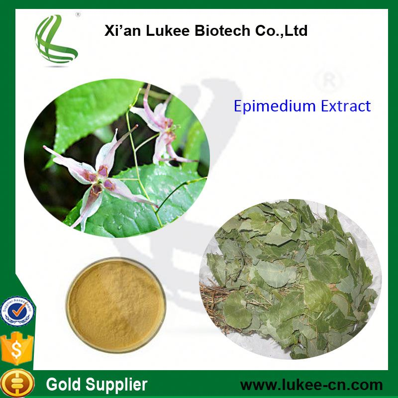100% pure epimedium herbal powder men health strong men icariin epimedium extract