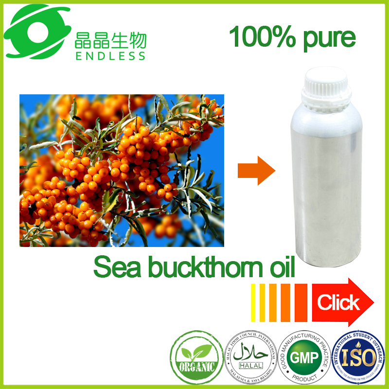 Manufacture supply high quality bulk organic sea buckthorn oil