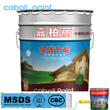 Caboli silicone based exterior wall paint color