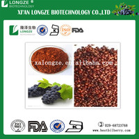 95% OPC Grape seed extract / Vitis vinifera seed extract powder with polyphenols 80% UV