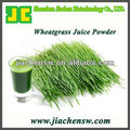 Organic Wheatgrass Juice Powder 25:1