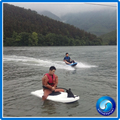 Durable in use alibaba suppliers motorized surfboard price
