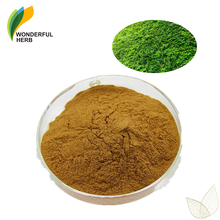 Natural hedera helix Ivy Leaf extract hederagenin Hederacoside Powder