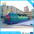 Huale 13.8x4x3m Children Inflatable Caterpillar Tunnel , inflatable worm tunnel for sale