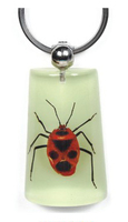 Hot sale unique REAL insect keychain park promotional gift item
