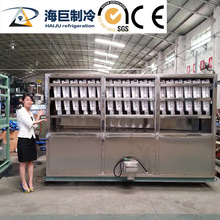 Industrial cube ice packing machine packaging machine preserved fruit drying