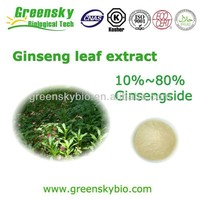 Food Price List Good Quality Panax Ginseng Leaves Extract