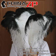 CHINAZP Factory Wholesale Cheap White with Black Tip Ostrich Feathers for Centerpiece Decorations