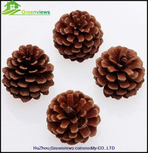 5CM Pine Cone Christmas Tree Ornament Hanging Decorations Hot design Christmas jumbo pinecone