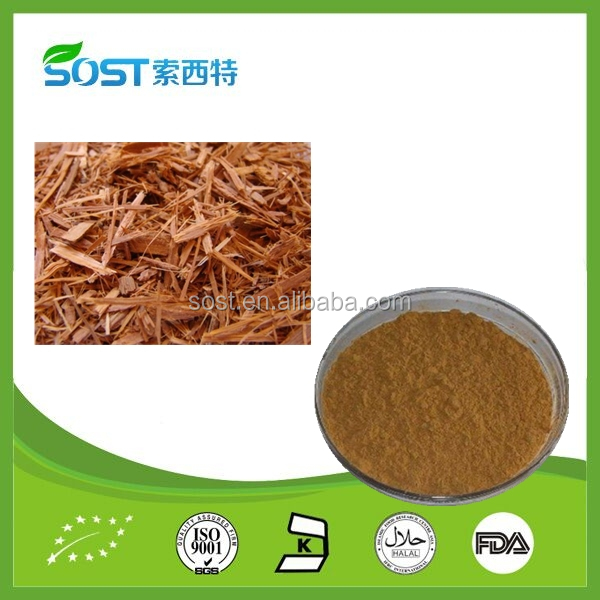 Wholesale natural herbal extract catuaba
