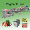 Vegetable washing machine/potato peeling machine