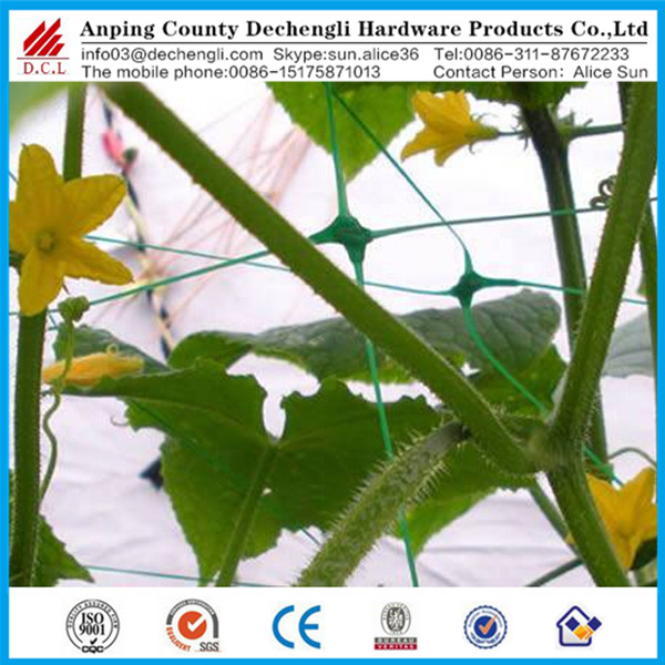 Plant Support net/HDPE Plant support net Plant climbing net Cucumber support net Bean and pea netting
