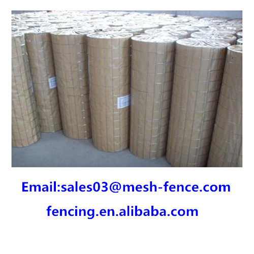 BWG19~22 Welded Wire Mesh Rolls/galvanized 6x6 6x4 concrete reinforcing roll welded wire mesh to Canada