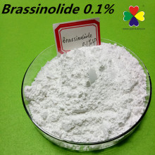 28-homo brassinolide 0.1%sp steroid powder , natural brassinolide cas 72962-43-7
