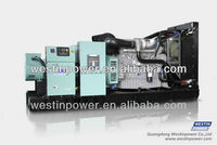 275 KVA Diesel Generator Set/Diesel Engine With Perkins/Stamford AC alternator(TP300T)