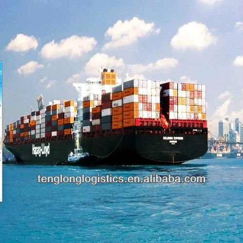 sea shipping service freight forwarder to Sokhna of Egypt from China Shenzhen Guangzhou Shanghai