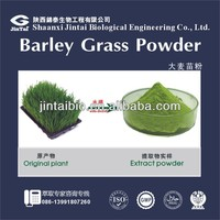 organic 10:1 20:1 wheat grass barley grass powder