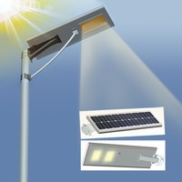 5W 8W 12W 15W 18W 20W 25W 30W 40W 50W 60W 70W 80W Aluminum Integrated Led Solar Street Light