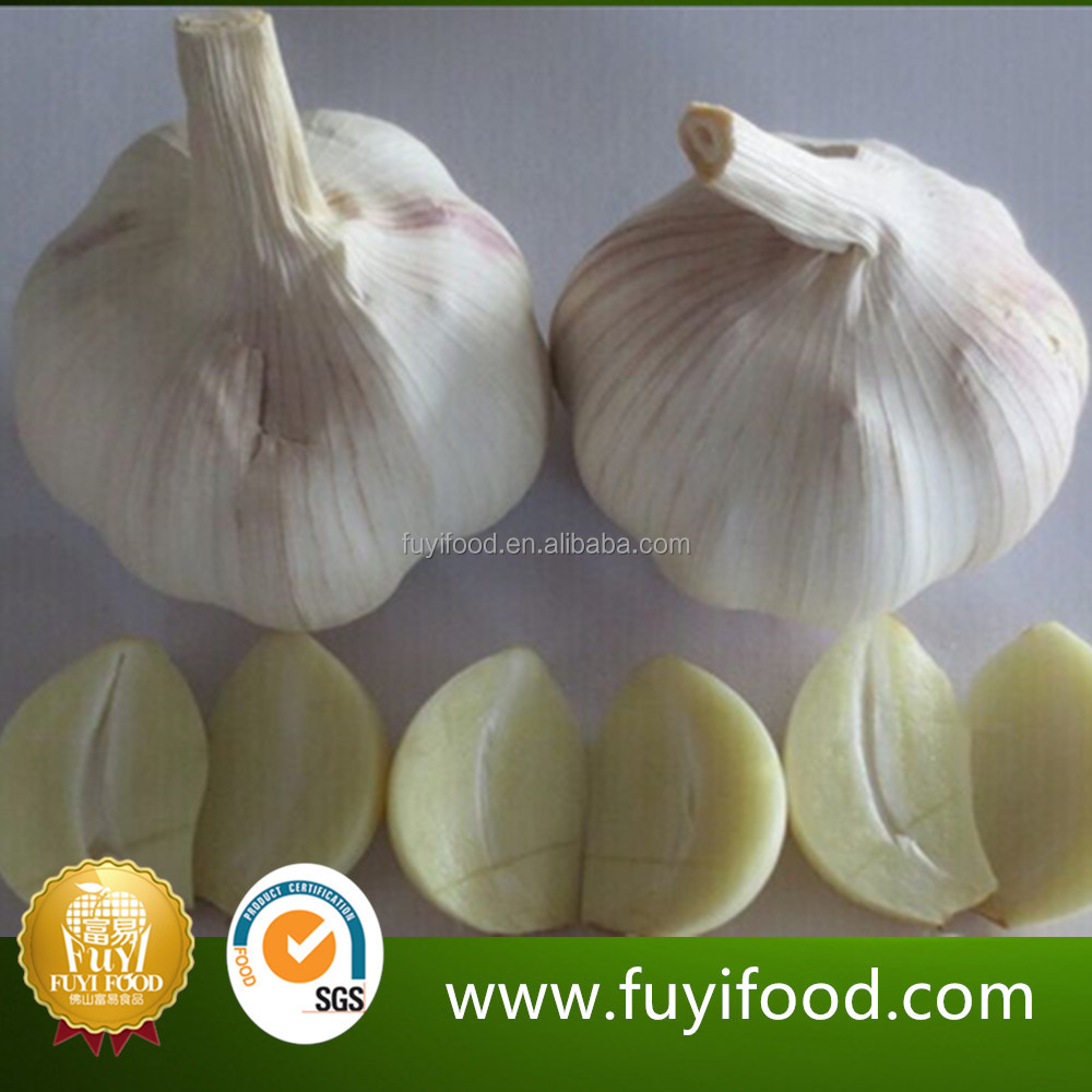 Fresh Pure White Normal White Purple Garlic Garlic Garlic