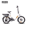 2018 New Design Low Step Hottest 36v250w 20'' chinese cheap electric bike,high quality folding electric bicycle,mini ebike