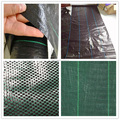agriculture pe net floor net weed mat for sale/ PP/PE weed mat with UV/Hot sell ground cover net/Weed mat