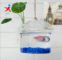 Hanging glass terrarium for water plant and small fish