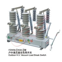 FZW58-24-1 High Voltage Outdoor H.V. Vacuum Load Break Switch